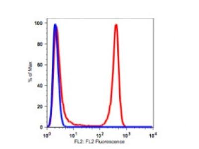 Anti-human CD4 Monoclonal Antibody Biotin Conjugated, Flow Validated