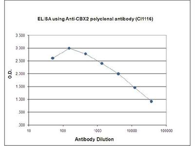 Anti-CBX2/M33 Antibody ChIP Grade