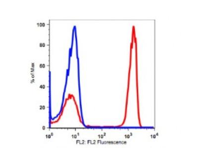 Anti-human CD4 Monoclonal Antibody PE Conjugated, Flow Validated