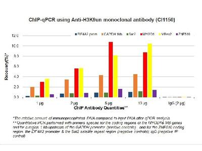 Anti-H3K9un erg3 Antibody (Monoclonal)