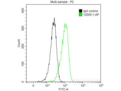 PrP antibody