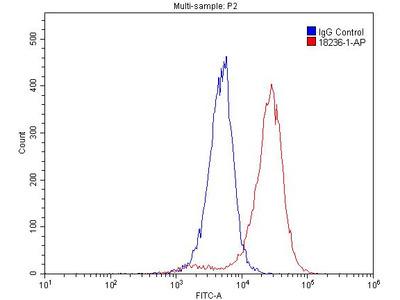 TRPC6 antibody