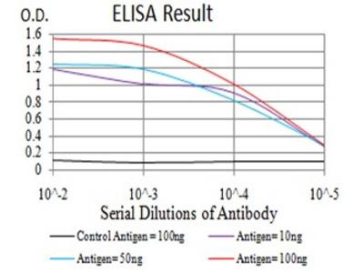 Mab Mo x human DDX1 (DBP-RB, UKVH5d) antibody