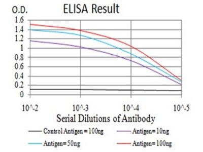Mouse Anti-IL1RAPL1 Antibody