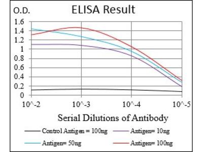 Mouse Anti-CGA Antibody