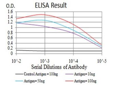 Mouse Anti-PLCG1 Antibody