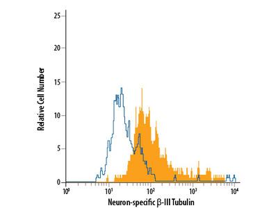 Neuron-specific beta-III Tubulin PerCP-conjugated Antibody