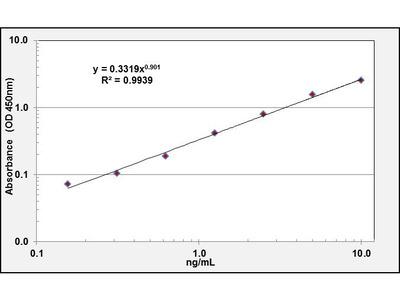 ATP7B ELISA Kit (Human) (OKCD00503)