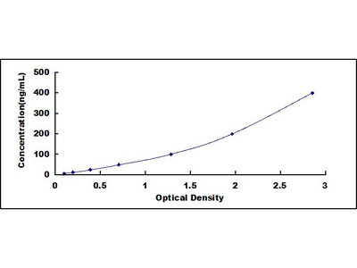 Mannose Binding Lectin Antibody ELISA Kit (Human) (OKCD01297)
