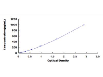 OSM ELISA Kit (Rat) (OKCD02747)