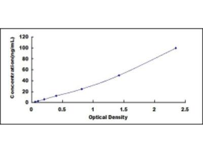 Heparin/Platelet Factor 4 Antibody ELISA Kit (Human) (OKCD01299)