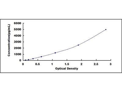 OVAL High Sensitivity ELISA Kit (Chicken) (OKCD01353)
