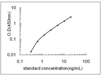 Myocd ELISA Kit (Rat) (OKEH06285)