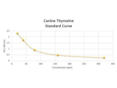 Canine Thyroxine ELISA Kit (Colorimetric)