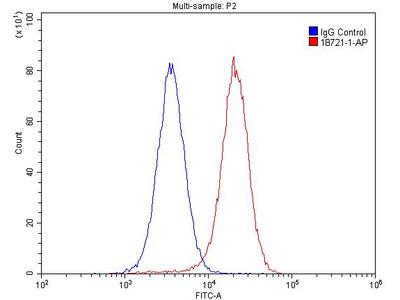 GABARAPL1 Antibody