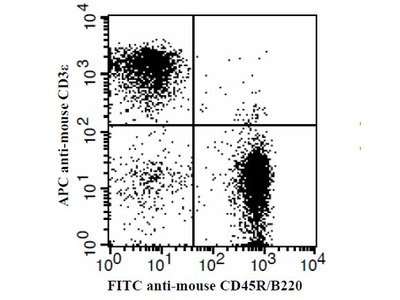 CD3E Monoclonal Antibody