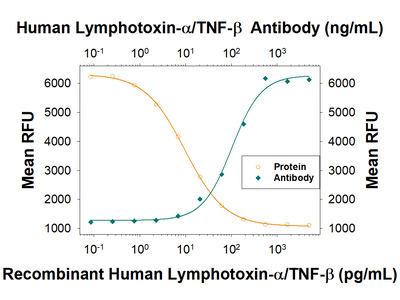 Lymphotoxin-alpha / TNF-beta Antibody