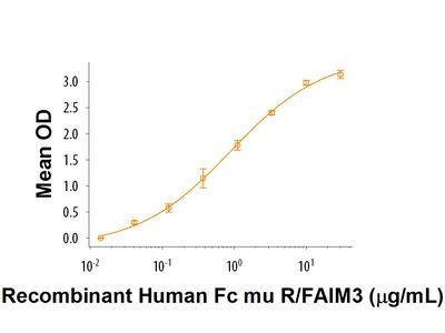 Fc mu R /FAIM3 Protein