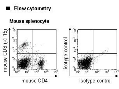 Anti-CD8 (Mouse) mAb-FITC