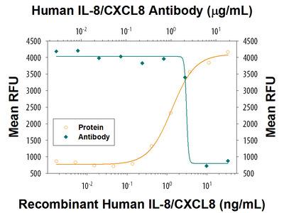 IL-8 / CXCL8 Antibody