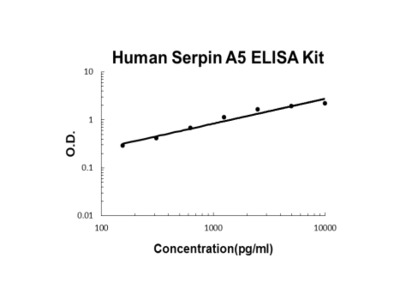 Human Serpin A5/PAI3 ELISA Kit PicoKine