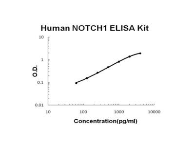 Human NOTCH1 ELISA Kit