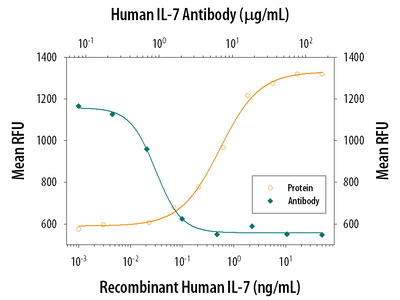 IL-7 Antibody