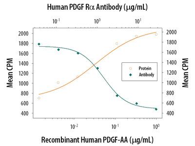 Good PDGFR Antibody for Immunohistochemistry