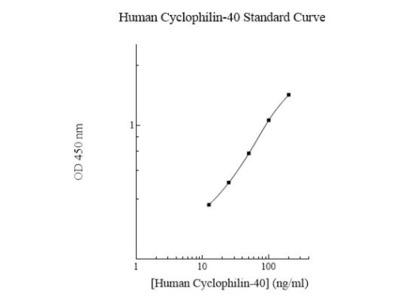 Human Cyclophilin 40 ELISA Kit (Colorimetric)