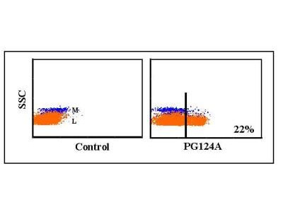 Mouse Monoclonal CD27 / TNFRSF7 Antibody