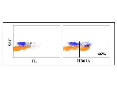 CD4 Antibody (HB61A)