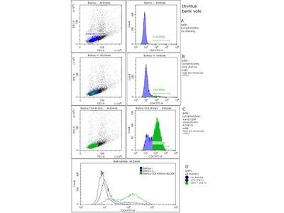CD4 Antibody (HAL36A)