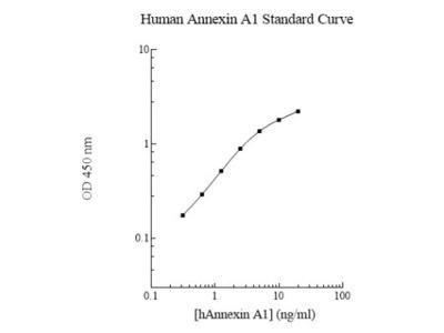 Human Annexin A1 ELISA Kit (Colorimetric)