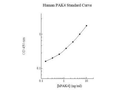 Human PAK4 ELISA Kit (Colorimetric)