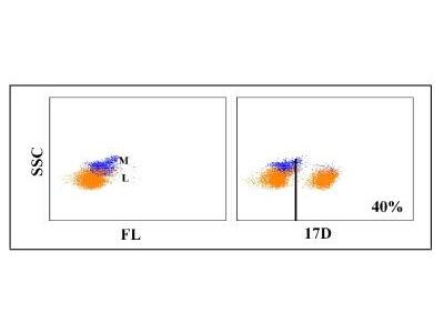 CD4 Antibody (17D)