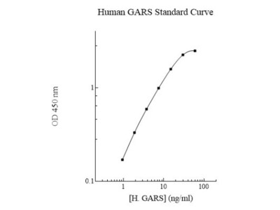 Human GARS ELISA Kit (Colorimetric)