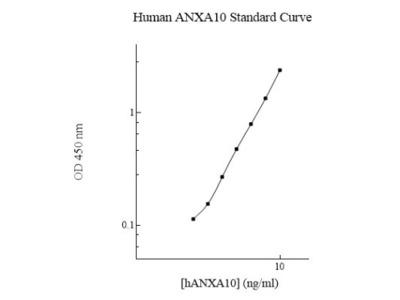 Annexin A10 ELISA Kit