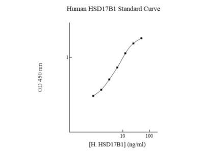 17 beta-HSD1 /HSD17B1 ELISA Kit