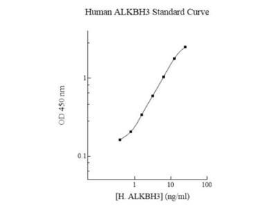 ALKBH3 ELISA Kit