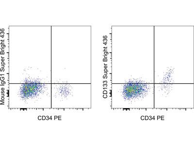 CD133 (Prominin-1) Monoclonal Antibody (TMP4), Super Bright 436, eBioscience™