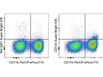 CD133 (Prominin-1) Monoclonal Antibody (13A4), Super Bright 436, eBioscience™