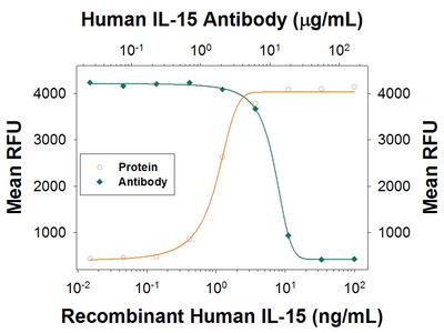 IL-15 Antibody