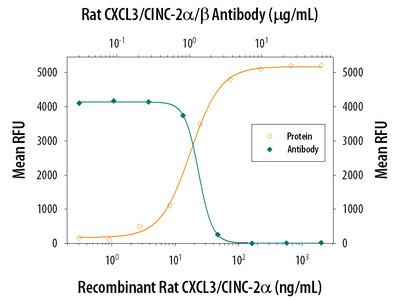 CXCL3 / GRO gamma / CINC-2 / DCIP-1 Antibody