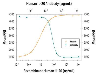 IL-20 Antibody