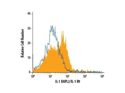 IL1RAPL2 Antibody
