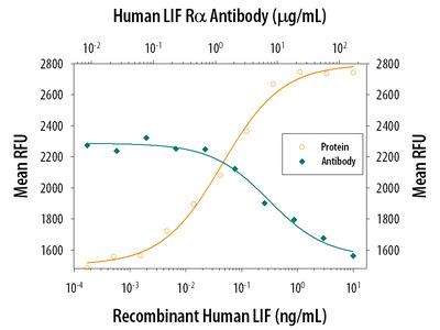 Human LIFR alpha Antibody