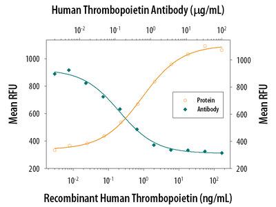 Human Thrombopoietin / Tpo Antibody