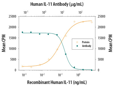 Human IL-11 Antibody