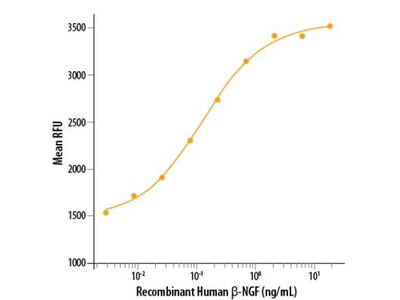 beta-NGF Biologically Active Protein