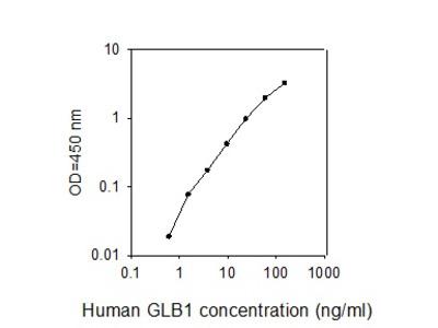 Human GLB1/Beta-galactosidase ELISA